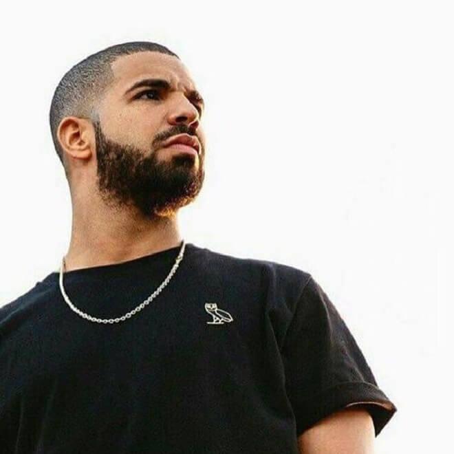 Drake Beard Styles