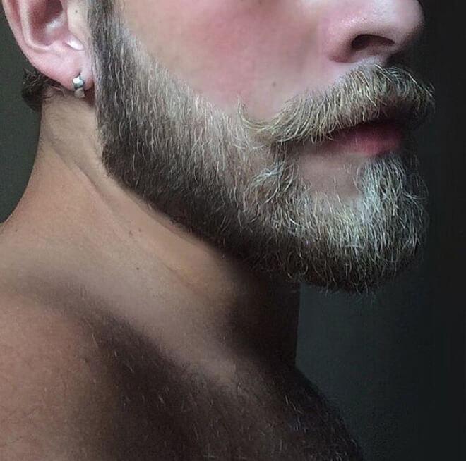 Golden With Black Beard