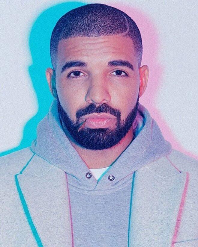 Low Skin Fade Drake Haircut