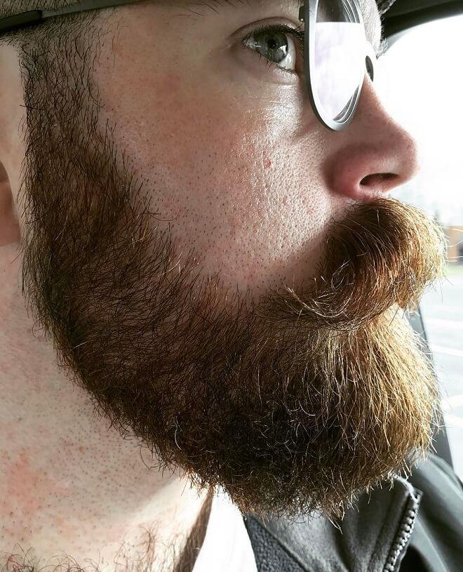Stubble Beard With Mustache