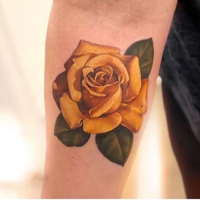 8fa591a94 Pictures Of Yellow Roses Tattoo - HD Image Flower and Rose Xmjunci.Com