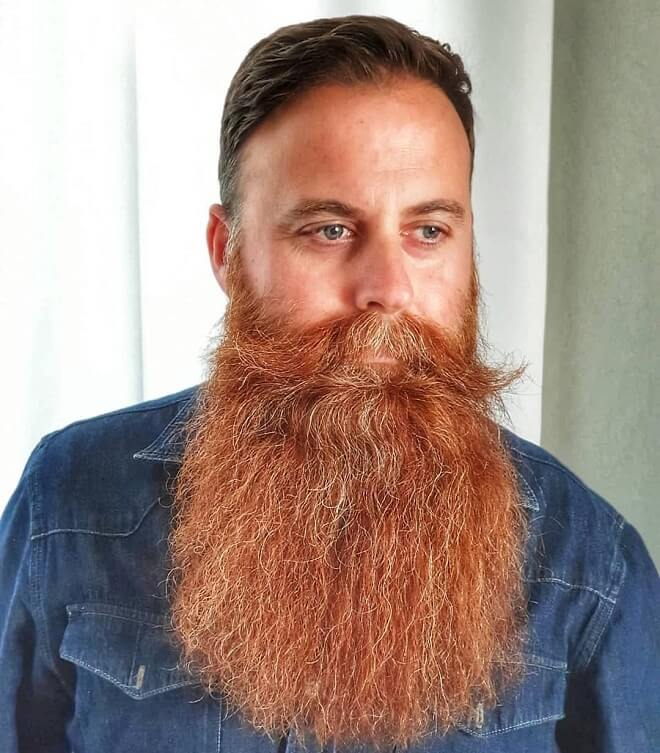 Mustache with Long Beard Style