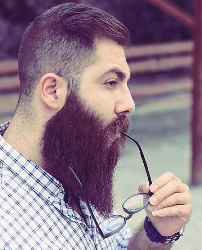 Taper Side Haircut with Full Long Beard